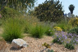 Plush Proudly Powered By Weebly San Ca Landscape Contractors Landscape Designers Perth Landscape Designers World