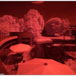 Shooting Sony NEX7 modified for infrared by Dierk Topp