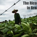 The Ricoh GR in Brazil by Colin Steel