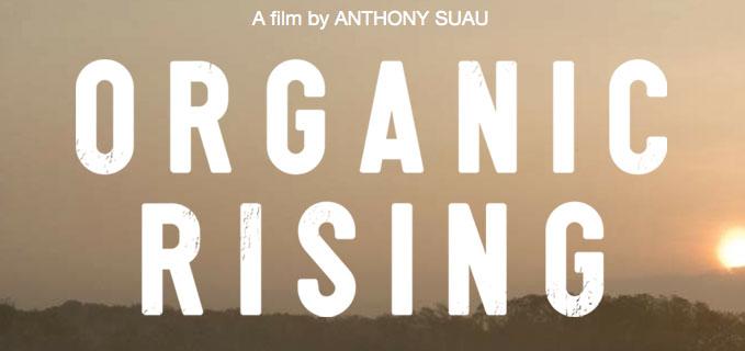 organicrisinganthony