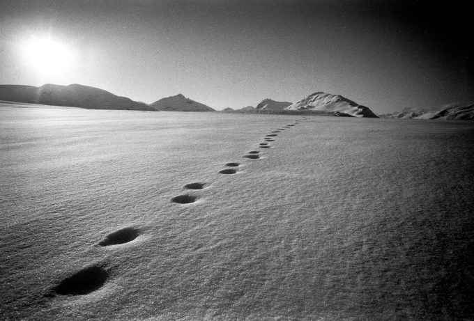 brunkhart_footprints_ak