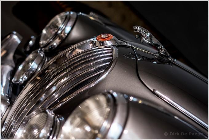05. Jaguar emblem