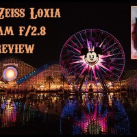 The Zeiss 21mm f/2.8 Loxia Lens Review for Sony FE. In Pictures.