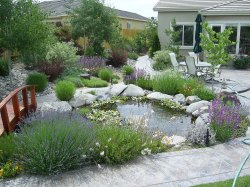 Charm Gardening Blog Backyard Gardening Blog Landscapes Design Mes Steve Landscaping