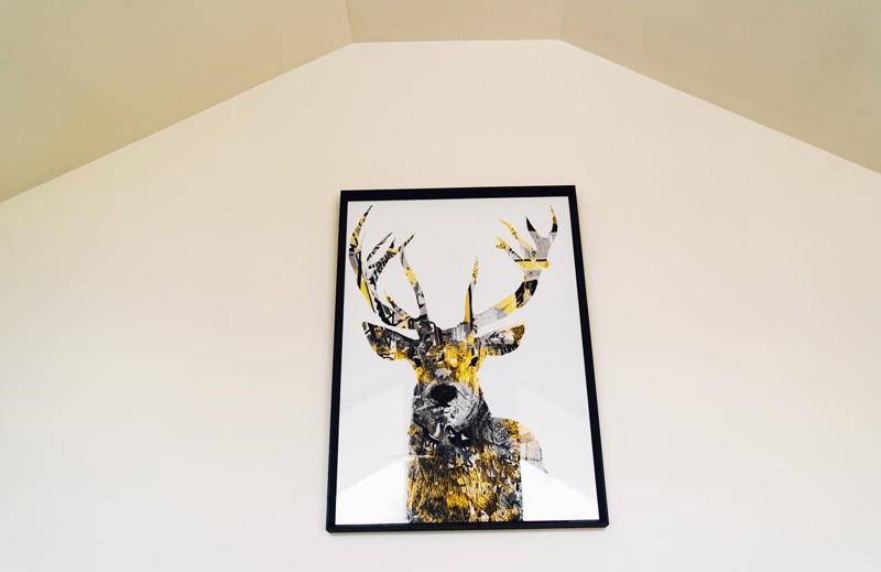 deer on a wall