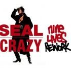 Seal - Crazy (Nine Lives rework)