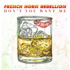 French Horn Rebellion - Don't You Want Me (The Human League Cover)