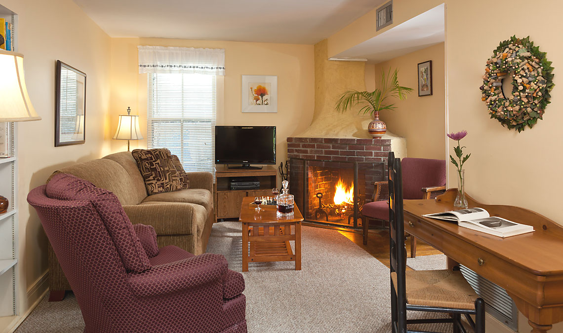 Cottage Living Room with fireplace and sleep sofa