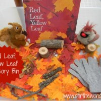 Red Leaf, Yellow Leaf Sensory Bin