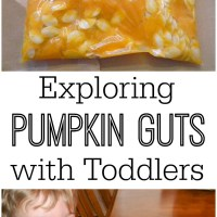 The Mess-Free Way to Explore Pumpkin Guts with Toddlers