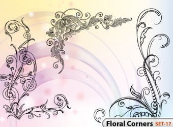 hand-drawn-floral-corner-vector-illustration-photoshop-brushes-s17