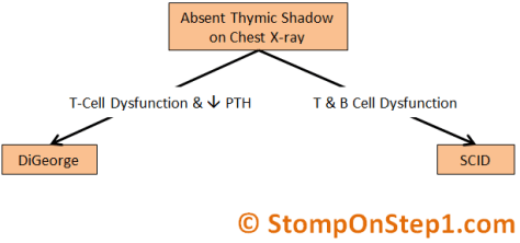 Absent Thymic Shadow on Chest X-Ray DiGeorge SCID