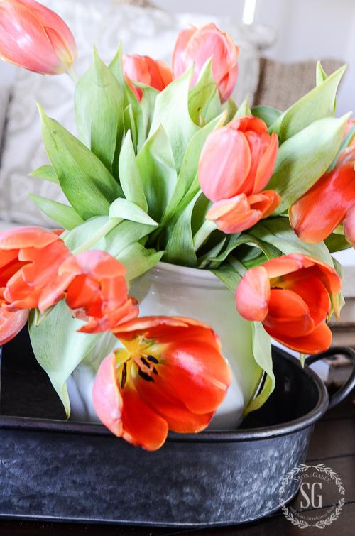 WINTER IN THE FAMILY ROOM-tulips-in-galvanized-tray-stonegableblog