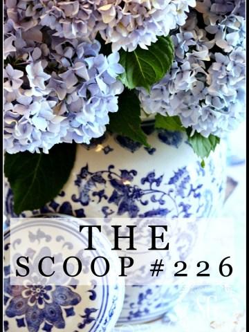 THE SCOOP #226