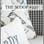 THE SCOOP #227