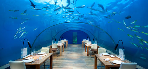 undersea_maldives