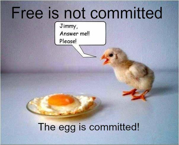 Free draws no committmentd