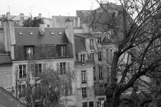 Paris Rooftops B+W