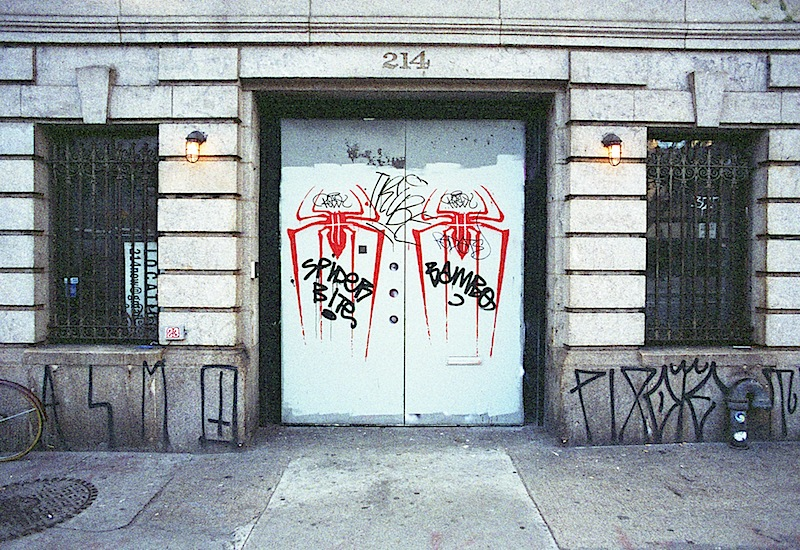 spider_bite_graffiti_street_art_in_nyc.jpg