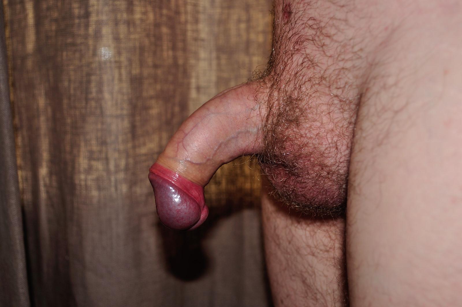 view erect cock head