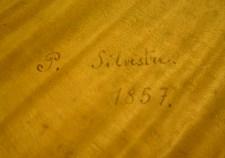 VC_Silvestre_012