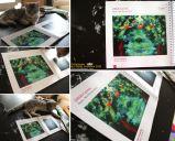 Depuis les racines (catalogue Arbustes 2013)
