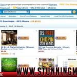 stunningmesh-e-commerce-sites-1
