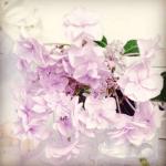 自分のために花を買う