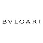 bvl_logo