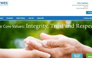Norwex Website