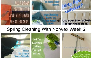 Spring Cleaing With Norwex Week 2