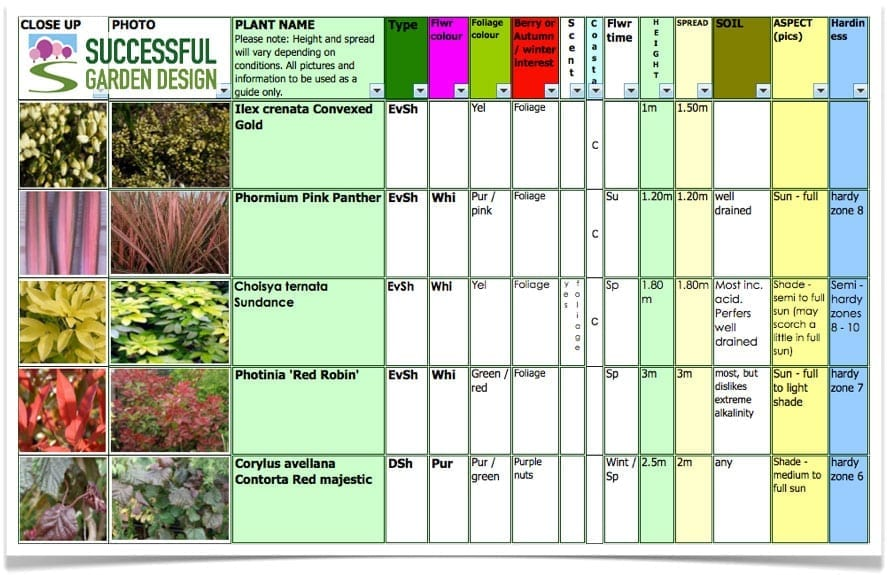 Garden plants for february for Successful garden design