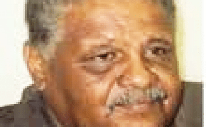 سعد الدين ابراهيم : حديقة الأحد