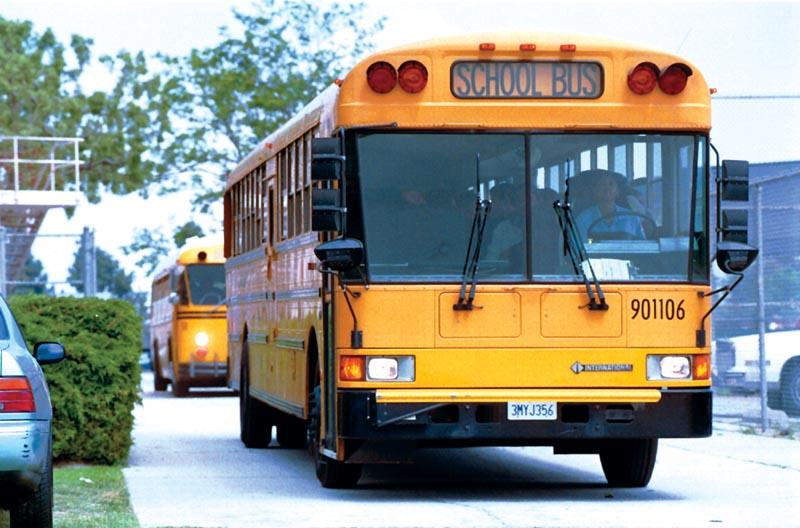 لماذا صممت حافلات النقل المدرسي صفراء ومن دون أحزمة الأمان؟