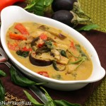 Thai grilled eggplant curry-1-5