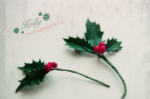 Holly-Xmas