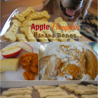 Tasty Tuesday: Apple Pumpkin Banana Bones