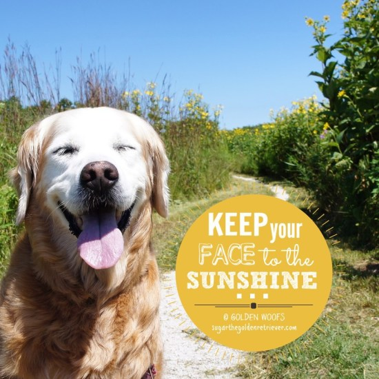 Keep Your FACE To The SUNSHINE
