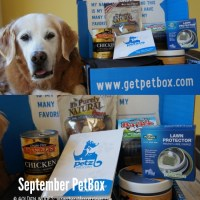 Unique Pet Subscription Box | September #PetBox