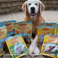 Zuke's Holiday Dog Treats For Your Dog