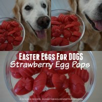 Easter Eggs for Dogs: Strawberry Egg Pops