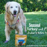 Seasonal Turkey and Pumpkin Zuke's Mini Naturals