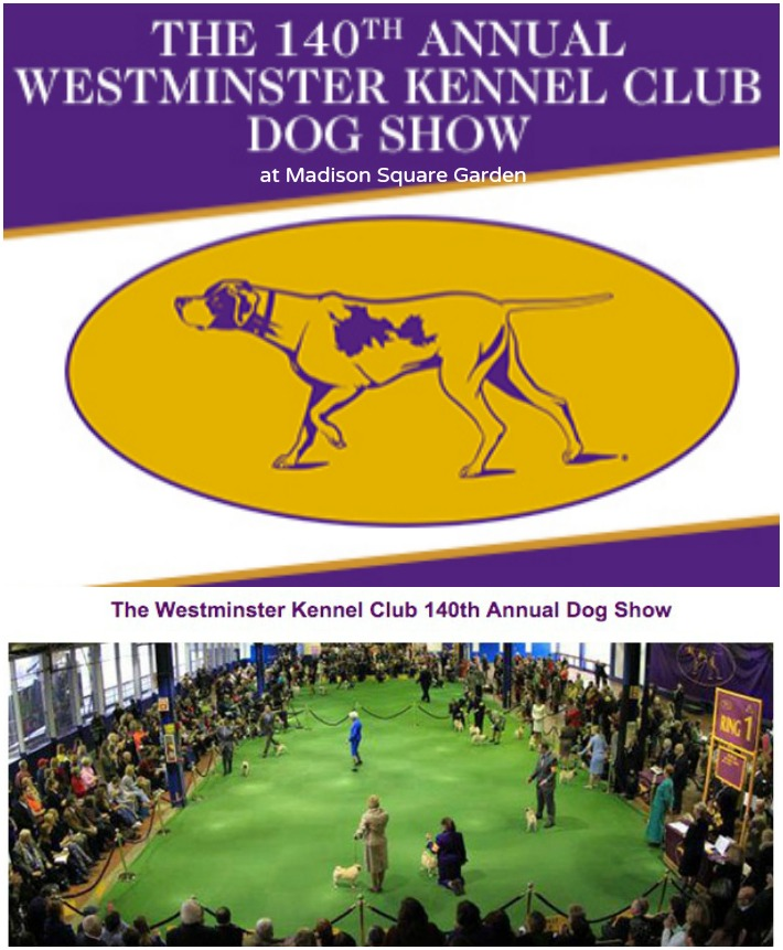 Westminster Dog Show 2016 Tickets