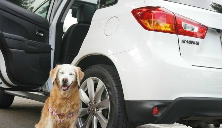 Outlander Sport Dog Friendly Car Ride #DriveMitsubishi