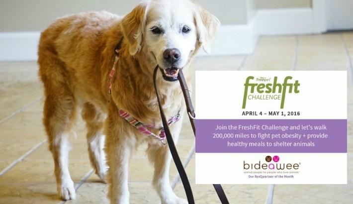 Help Walk 200k for Pet Obesity #ResQwalk #FreshFitChallenge