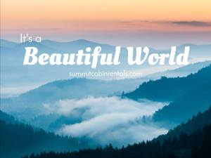 beautifulworld