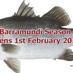 Barramundi Season Opens 1st February 2016