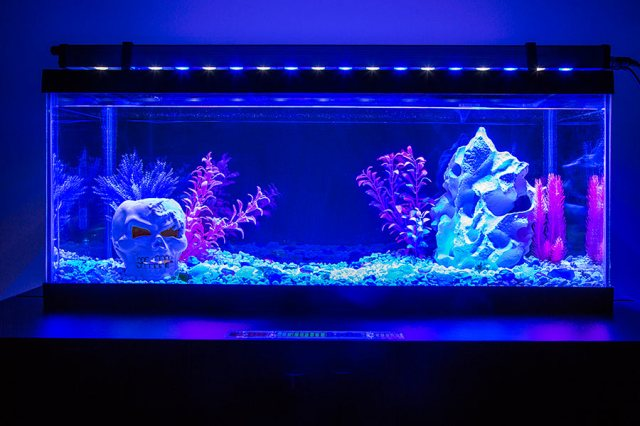 LED Aquarium Light Fixture | LED Aquarium Lighting | LED Grow Lights