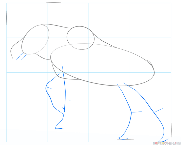 How to draw a moose   Step by step Drawing tutorials Step 3
