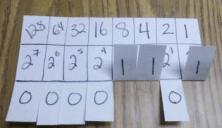 Binary Flip Picture